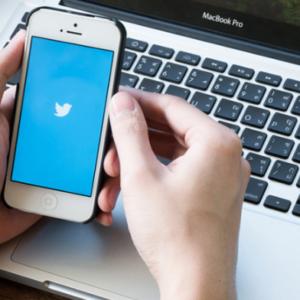 twitterをワードプレスに埋め込みする方法!タイムライン自動投稿やフォローボタン